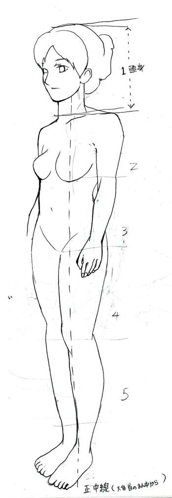身体の図1