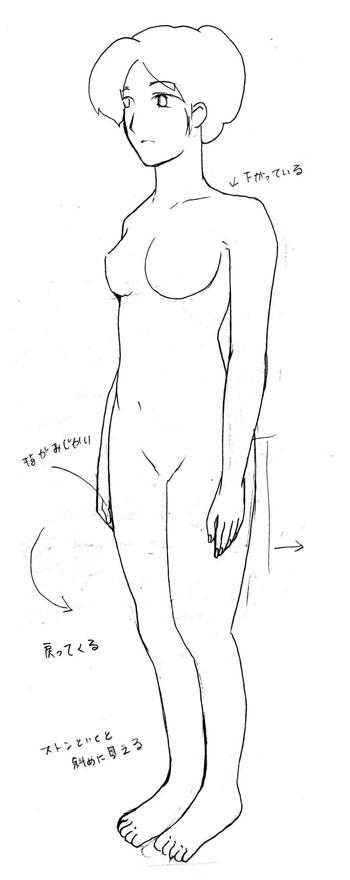 身体の図3